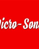 Micro-Sonde