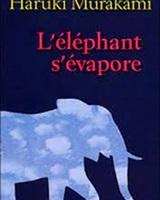 l'éléphant s'évapore©