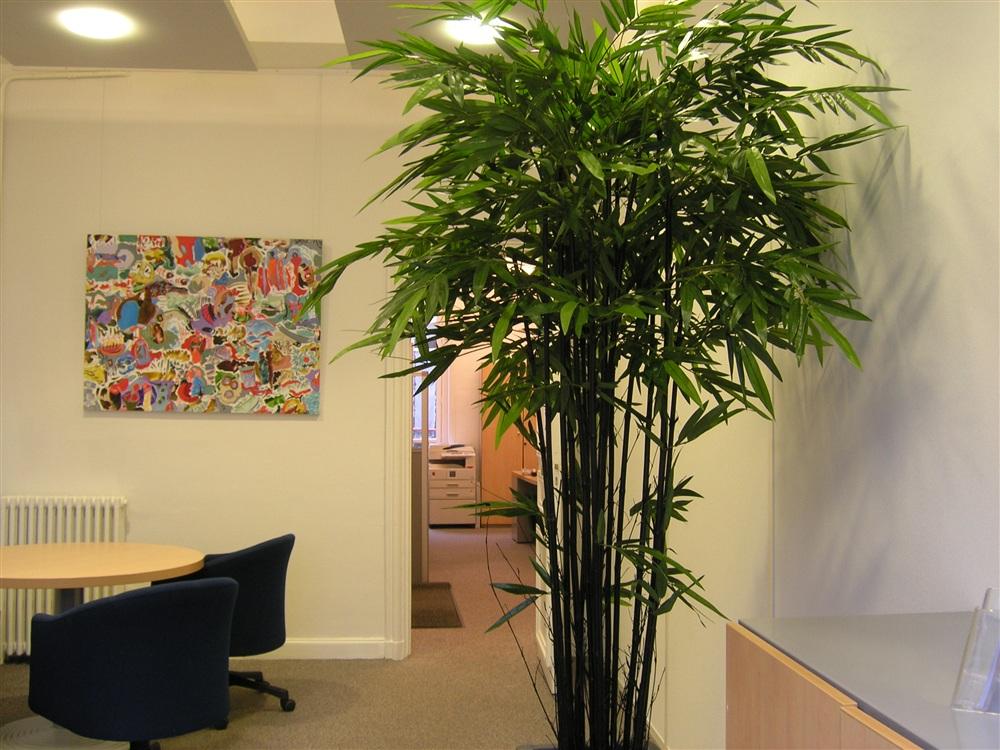 Bouquet de bambous, cannes naturelles teintées noires, feuillage polyester. Mis en place dans le bureau d'une banque privée. Hauteur de l'ensemble : 2m40<br />
