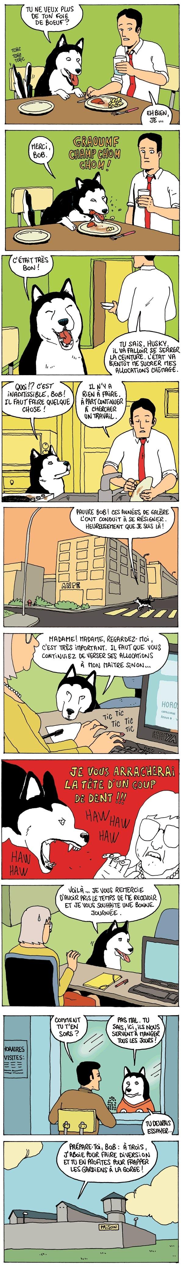 Bob et Husky contre la morosité